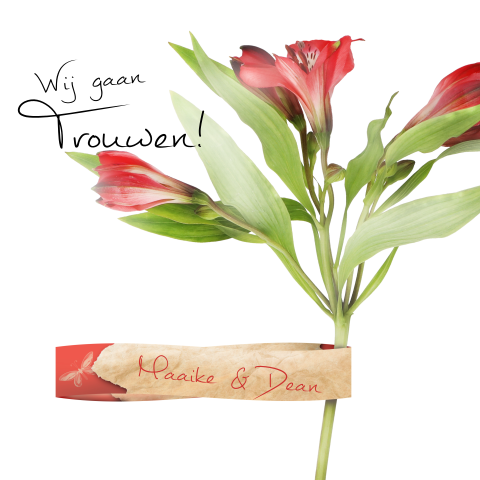 Trouwkaart label en rode bloemen