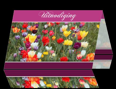 Uitnodiging Verjaardag Met Bloemen Voor Een Vrouw 65 Jaar